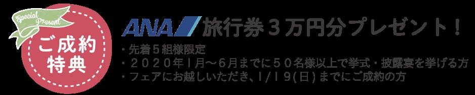 ANA旅行券3万円プレゼント