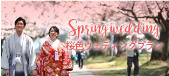 桜色ウェディング